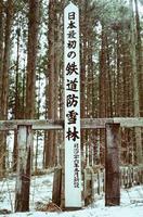 kaiko200_2.JPG