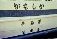 kaiko207_1.jpg
