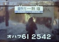 kaiko214.JPG