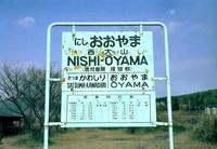 kaiko240.JPG