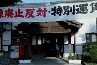 kaiko242.jpg