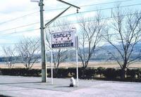 kaiko254.JPG